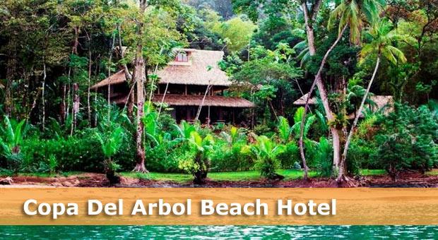 costa-rica-beach-hotels-copa-del-arbol